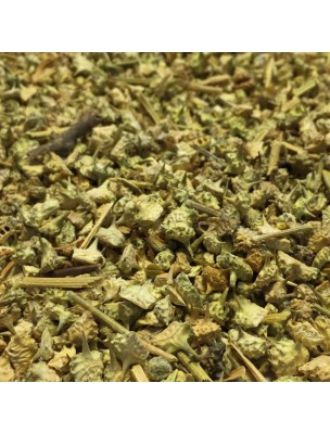 Tribulus - Fruit 100g - Tisane de Tribulus terrestris