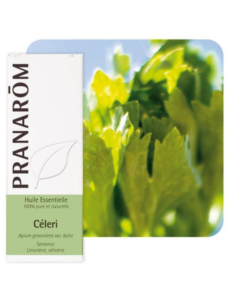 Céleri (Ache des marais) - Huile essentielle Apium graveolens var. dulce 10 ml - Pranarôm
