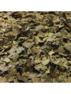 Image de Noyer - Feuilles coupées 100g -Tisane de Juglans regia L. depuis ▷ Souci Bio - Pétales 50g - Tisane de Calendula officinalis