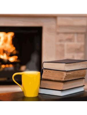 Tisane Ventilation - Maux de gorge & Soirées d'hiver 100 grammes