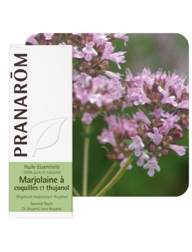 Marjolaine à coquilles ct Thujanol - Origanum majorana ct thujanol 5 ml - Pranarôm