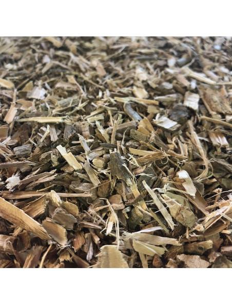 Saule pourpre Bio - Ecorce coupée 100g - Tisane de Salix purpurea
