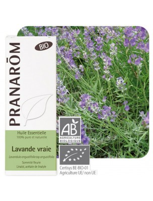 Lavande officinale (vraie) Bio - Huile essentielle Lavandula angustifolia 10 ml - Pranarôm