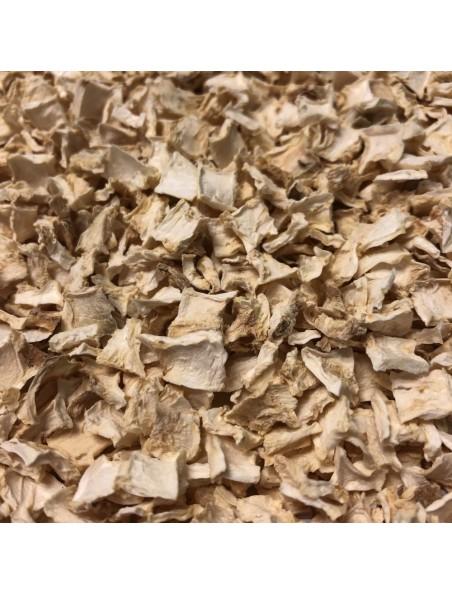 Ache des marais - Racine coupée 100g - Tisane d'Apium graveolens