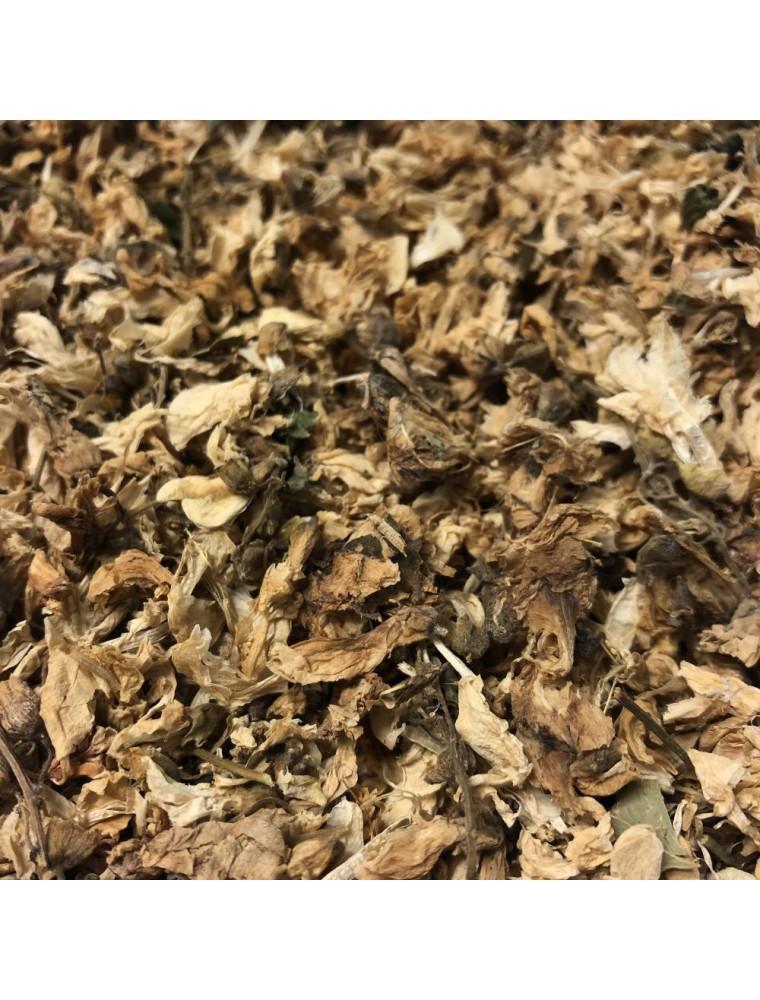 Acacia robinier - Fleurs 100g - Tisane de Robinia pseudoacacia
