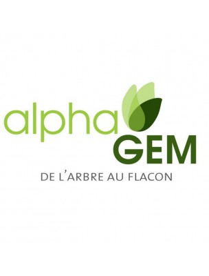 https://www.louis-herboristerie.com/18947-home_default/figuier-macerat-de-bourgeons-bio-ficus-carica-15-ml-alphagem.jpg