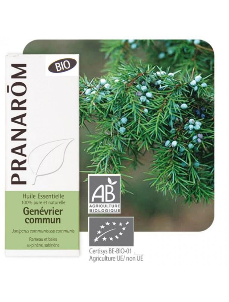 Genévrier Bio - Huile essentielle Juniperus communis var alpina 5 ml - Pranarôm
