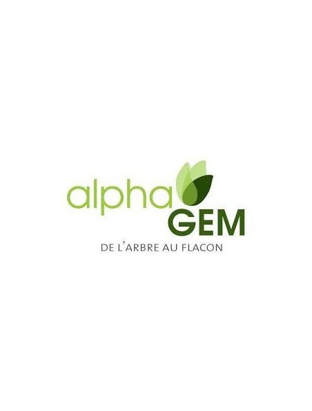 Olivier Macérat de jeunes pousses Bio - Olea europaea 15 ml - Alphagem