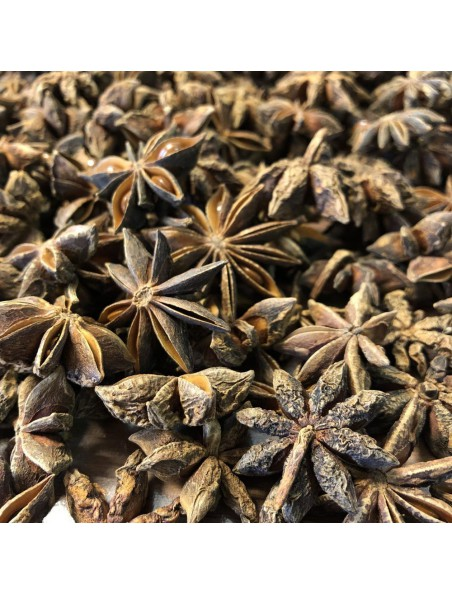 Anis étoilé Bio - Fruit 100g - Tisane d'Illicium verum hook. f.