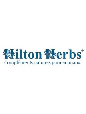 Vinaigre de Cidre - Vitamines Chevaux, chiens, volailles et oiseaux 1 Litre - Hilton Herbs