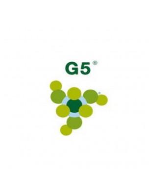 Silicium organique G5 - Articulations et cartilage 500 ml - LLR-G5