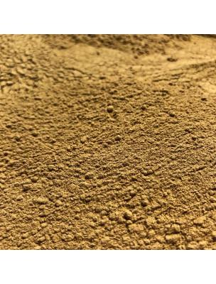 Chicorée Bio - Racine poudre 100g - Tisane Cichorium intybus L.
