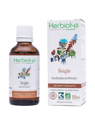 Image de Seigle Macérât de bourgeon Bio - Purification et Minceur 50 ml - Herbiolys depuis ▷ Véritable Aubier du Tilleul sauvage du Roussillon Bio - Copeaux