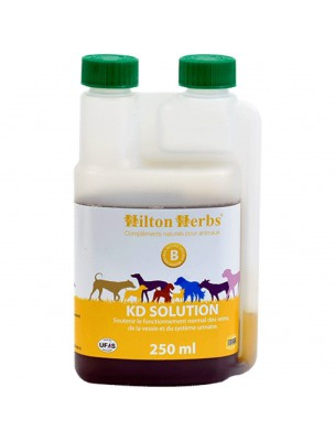 https://www.louis-herboristerie.com/21256-home_default/kd-solution-systeme-urinaire-des-chiens-250-ml-hilton-herbs.jpg