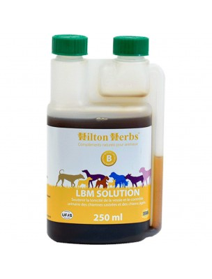 LBM solution - Incontinence des  Chiens 250 ml - Hilton Herbs