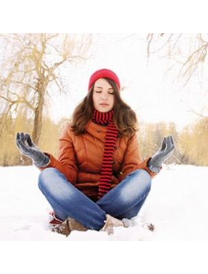 https://www.louis-herboristerie.com/21343-home_default/alternativ-aroma-bio-defenses-hiver-40-capsules-d-huiles-essentielles-salvia.jpg