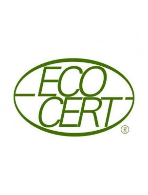 https://www.louis-herboristerie.com/21345-home_default/alternativ-aroma-bio-defenses-hiver-40-capsules-d-huiles-essentielles-salvia.jpg