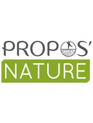 Noyaux d'abricot Bio - Huile végétale de Prunus armeniaca 100 ml - Propos Nature