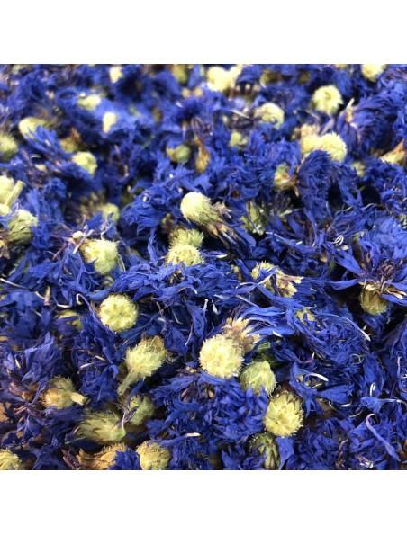 Bleuet Bio - Fleurs 50g - Tisane de Centaurea cyanus L.