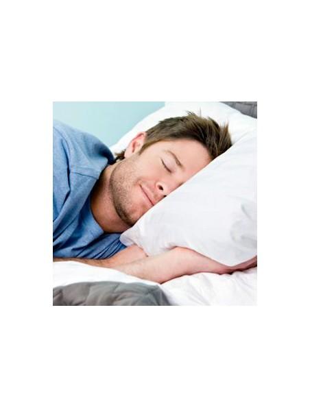 IbuActin Nuit - Sommeil 30 capsules végétales - Solaray