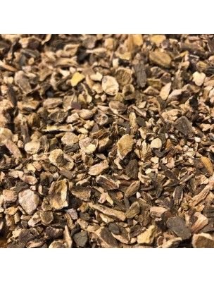 Rhubarbe - Racine coupée 100g - Tisane de Rheum officinalis / palmatum