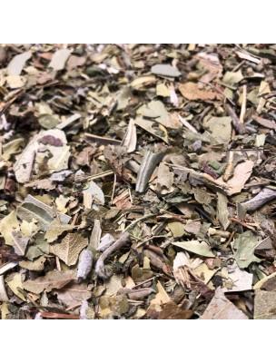 Tisane Stop Sucre Bio - 100 grammes