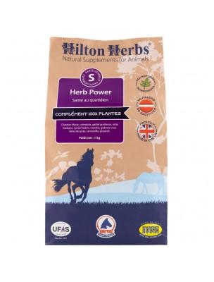 Herb Power - Forme et Vitalité 1 Kg - Hilton Herbs