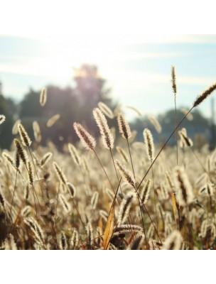 Noviral Anti Allergie Spray - Allergies 200 pulvérisations - Ts Reform