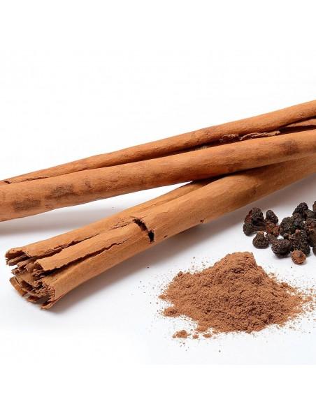 Cannelle Bio - Ecorce morceaux coupés 100g - Tisane de Cinnamomum zeylanicum