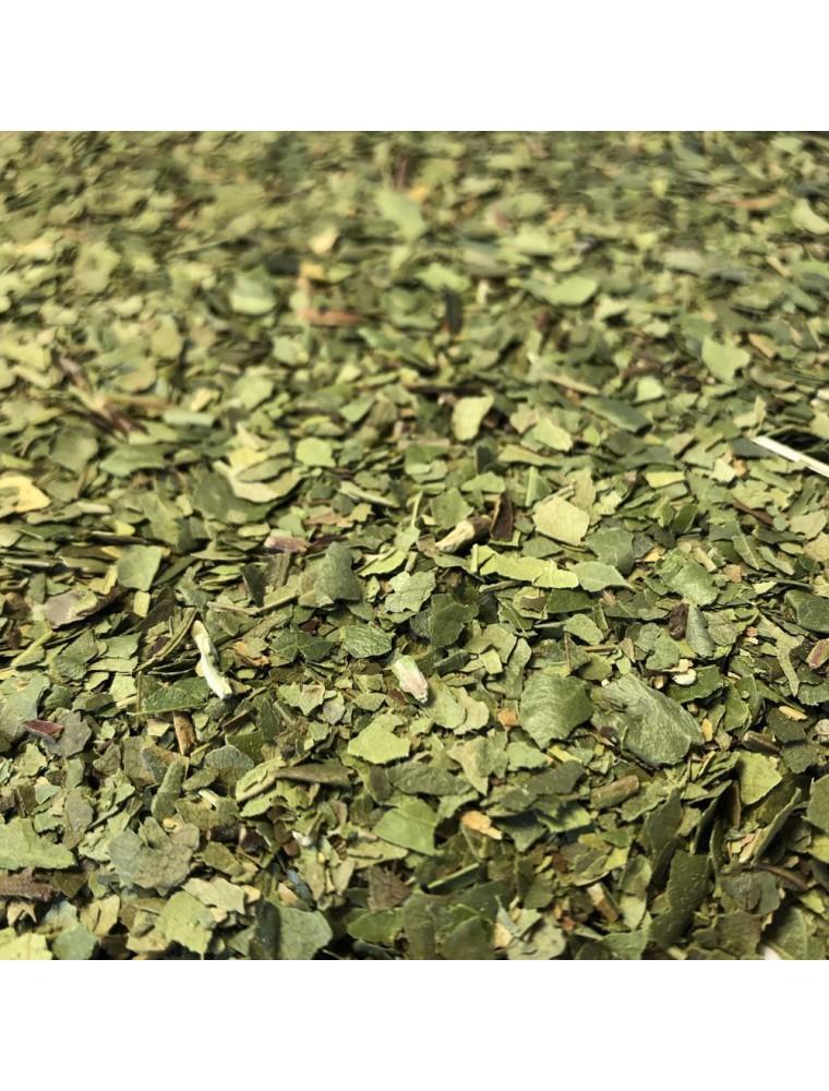 Arbousier - Feuilles coupées 100 g - Tisane d'Arbutus unedo