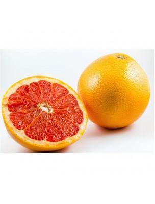 https://www.louis-herboristerie.com/23793-home_default/citruvital-bio-extrait-de-pepins-de-pamplemousse-100-ml-ladrome.jpg