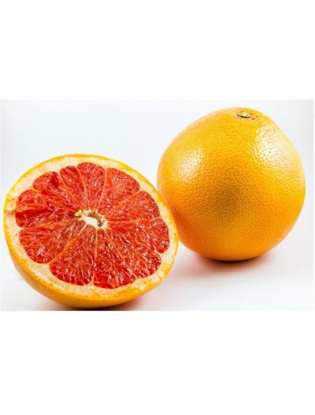 Citruvital Bio - Extrait de pépins de Pamplemousse 50 ml - Ladrôme