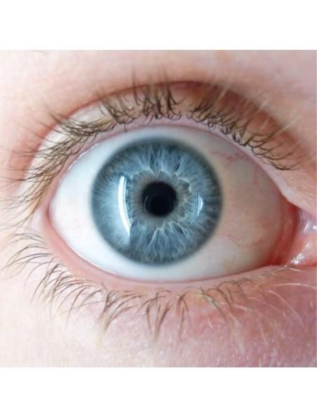 Lutéine Eyes HD 24 mg - Vue 60 capsules végétales - Solaray