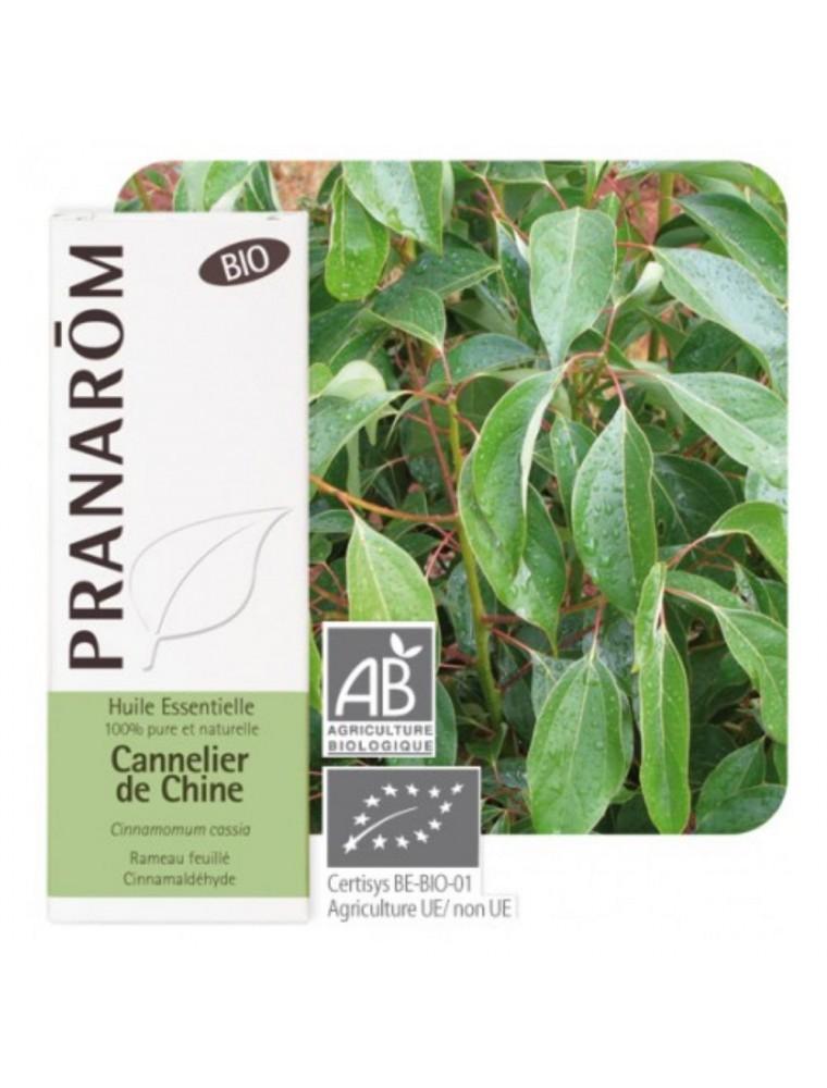 Cannelier de Chine Bio - Cinnamomum cassia 10 ml - Pranarôm