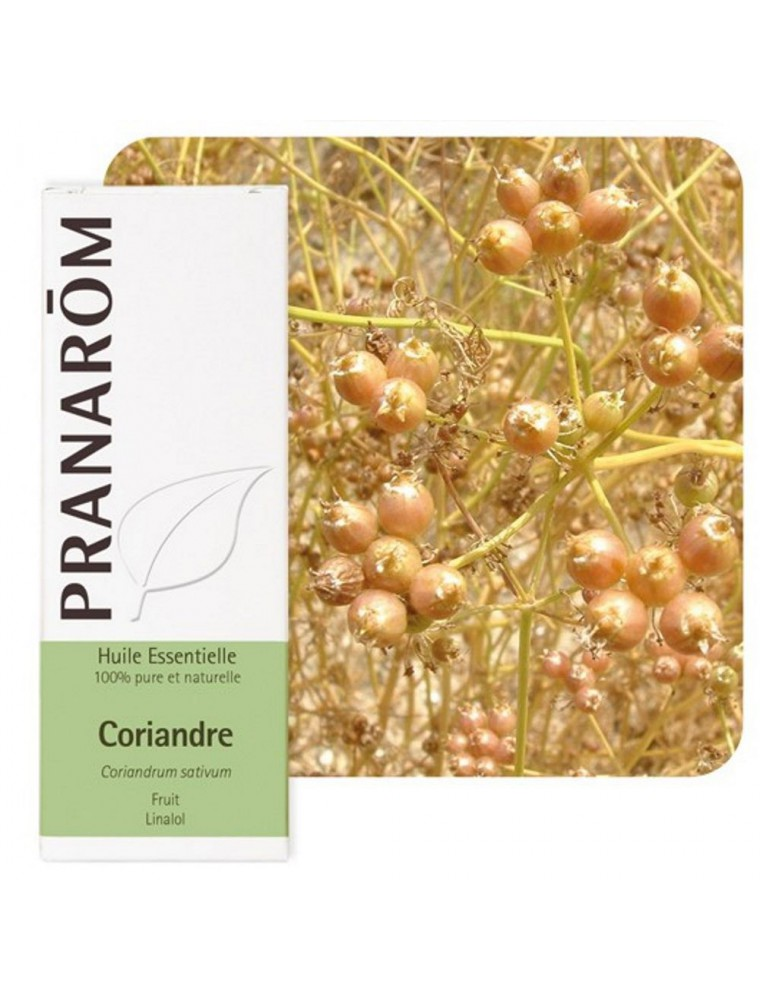 Coriandre - Huile essentielle de Coriandrum sativum 10 ml - Pranarôm