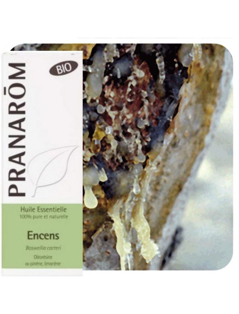 Encens (oliban) Bio - Huile essentielle de Boswellia carteri 5 ml - Pranarôm