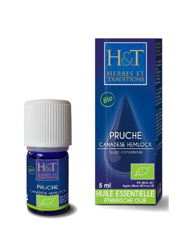 Pruche Bio - Huile essentielle Tsuga canadensis 5 ml - Herbes et Traditions
