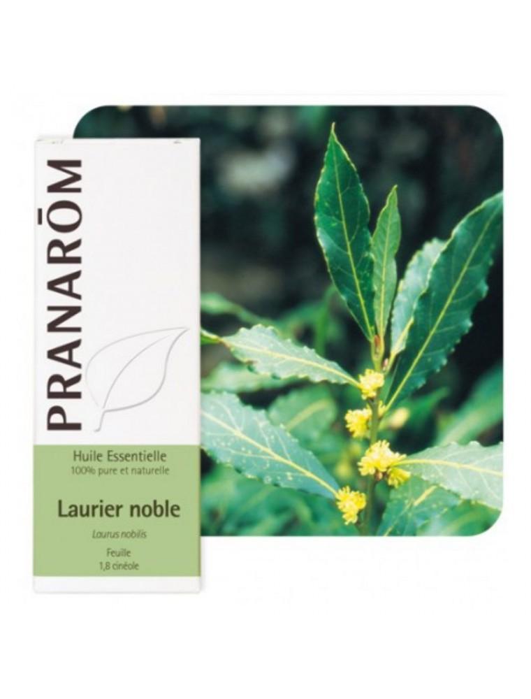 Laurier noble - Huile essentielle de Laurus nobilis 5 ml - Pranarôm