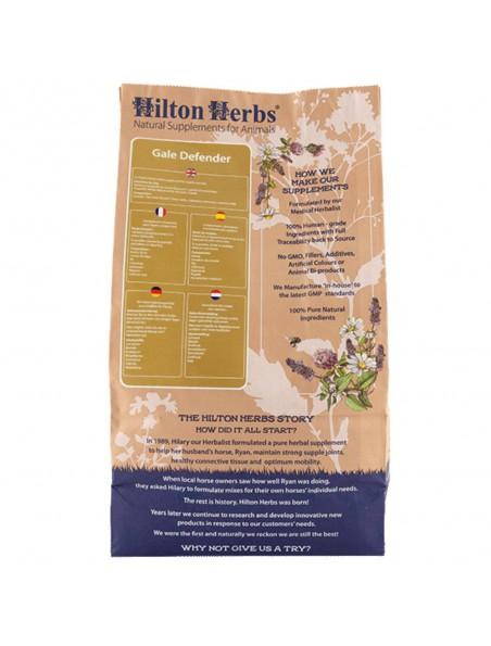 Gale Defender - Gale de boue & Bactéries 2 Kg - Hilton Herbs