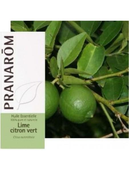 Lime Citron vert - Huile essentielle Citrus aurantifolia 10 ml - Pranarôm