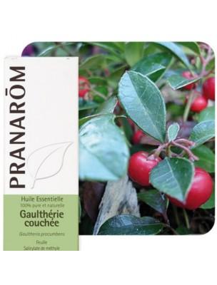 Gaulthérie couchée - Huile essentielle de Gaultheria procumbens 10 ml - Pranarôm