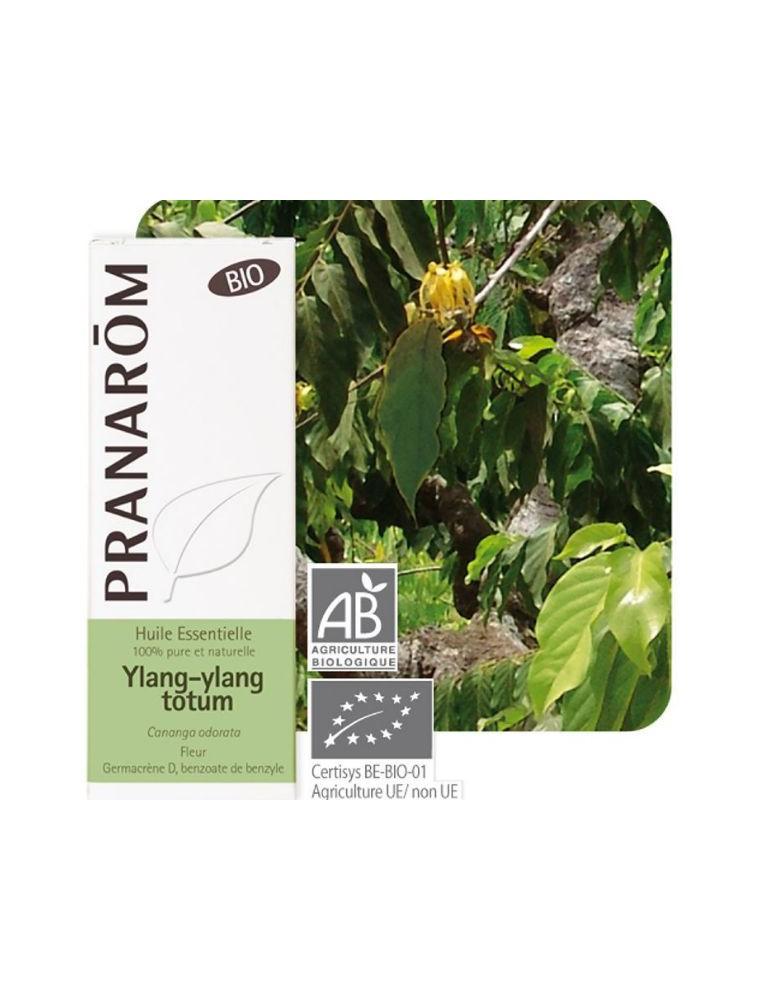 Ylang-ylang Bio - Cananga odorata 5 ml - Pranarôm