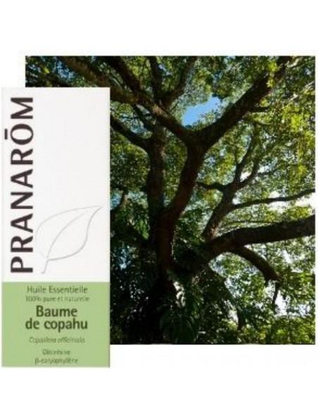 Baume de Copahu (Copaïba) - Huile essentielle Copaifera officinalis 10 ml - Pranarôm