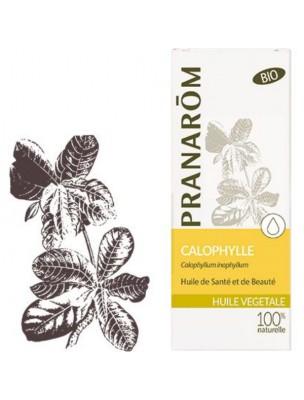 Calophylle (Tamanu) Bio - Huile végétale Calophyllum inophyllum 50 ml - Pranarôm