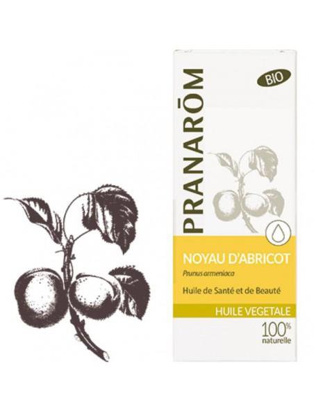 Noyau d'abricot - Huile végétale Prunus armeniaca 50 ml - Pranarôm
