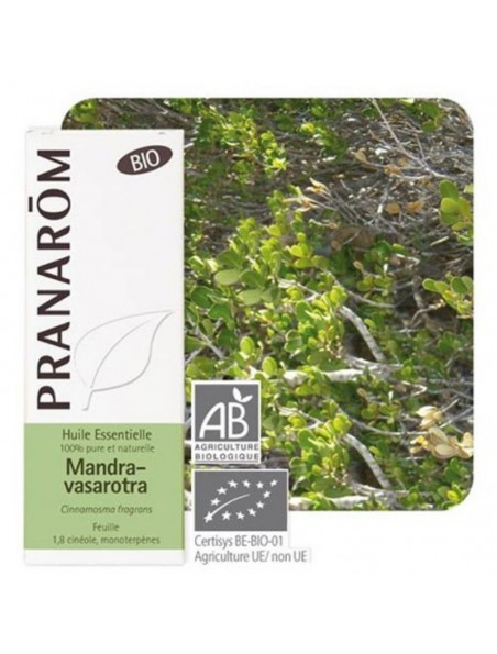 Mandravasarotra (Saro) Bio - Huile essentielle Cinnamosma fragrans 10 ml - Pranarôm