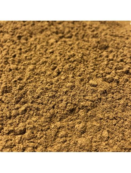 Giroflier Clou Bio - Poudre 100 g - Tisane de Syzygium aromaticum (L.) Merr.