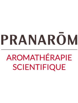 Romarin à verbénone Bio - Huile essentielle de Rosmarinus officinalis ct ver. 5 ml - Pranarôm