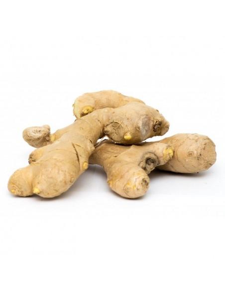 Gingembre Bio - Troubles digestifs 120 gélules - Purasana