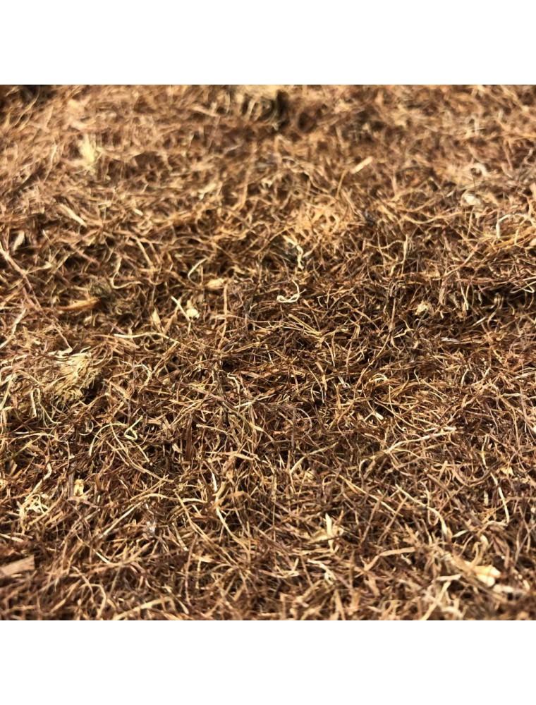 Maïs - Stigmates (Barbe de maïs) 100g - Tisane de Zea mays